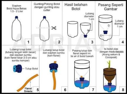 cara menanam sawi dengan metode hidroponik