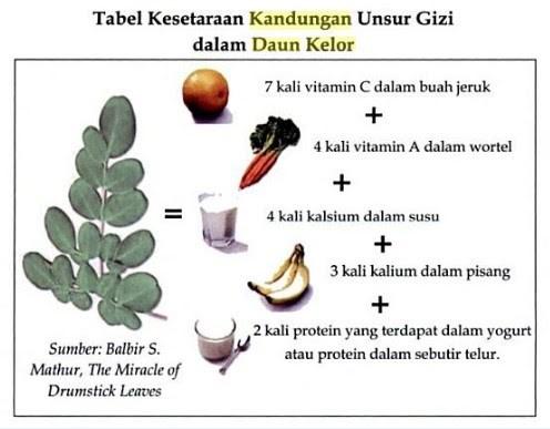 manfaat daun kelor untuk diabetes
